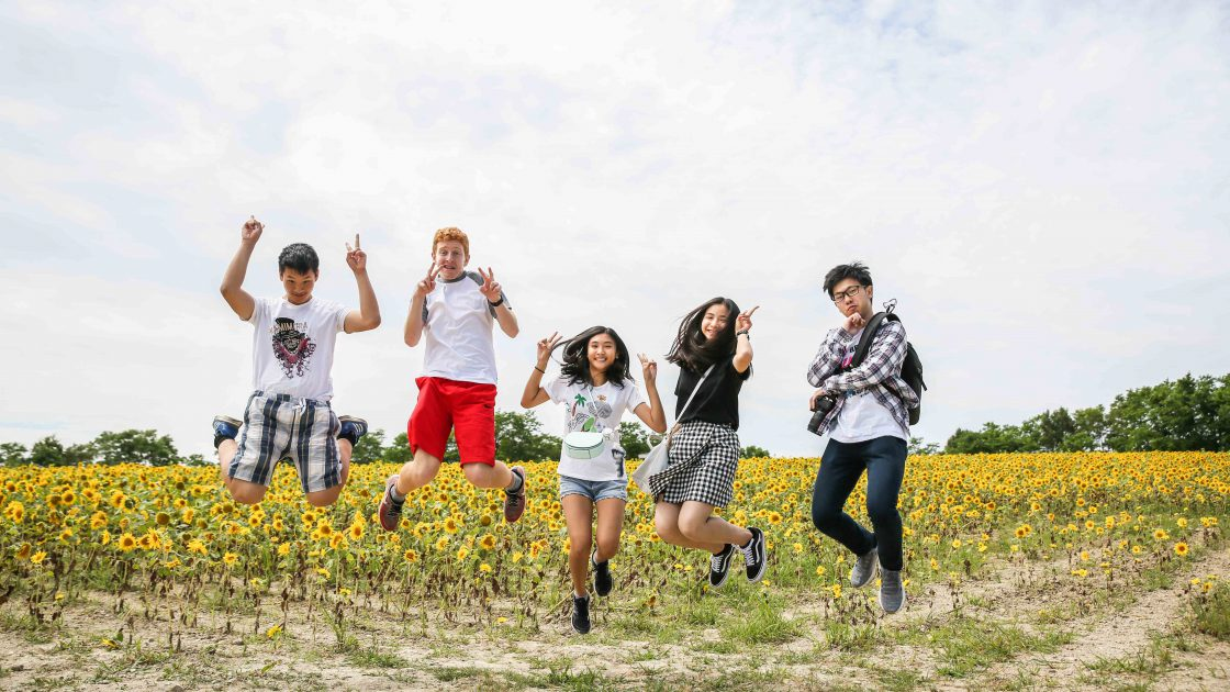 Summer Study Programs and Courses in Japan